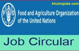 Food and Agriculture Organization -FAO Job Circular 2017