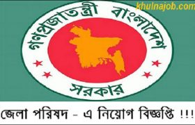 District Council Job Circular 2017