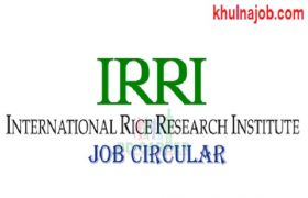 International Rice Research Institute - IRRI Job Circular 2017