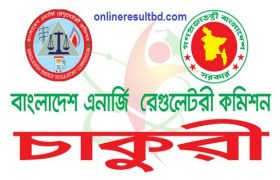 Bangladesh Energy Regulatory Commission Job Circular 2017